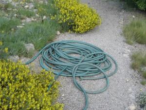 zahradní hadice na cestě