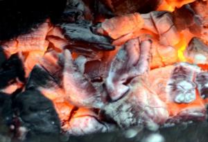 hořící dřevěné uhlí